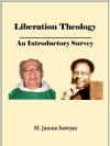 Liberation Theology: An Introductory Survey (Christian Theological Traditions and Movements) - M. James Sawyer