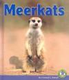 Meerkats - Conrad J. Storad