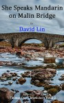 She Speaks Mandarin On Malin Bridge (The Thomas Day Chronicles Book 2) - David Lin