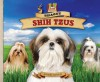 Shaggy Shih Tzus: Small But Sturdy! Lively! Alert! Proud! - Anders Hanson