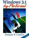 Windows 3.1 by Pictorial - Dennis P. Curtin