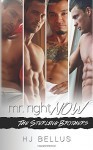 Mr. Right Now: Vol. 1-4 - HJ Bellus