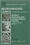 Stroke I: An Issue of Neuroimaging Clinics (The Clinics: Radiology) - Michael Lev