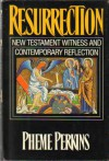 Resurrection: New Testament Witness And Contemporary Reflection - Pheme Perkins