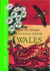 Stories From Wales: Oxford Children's Myths and Legends - Gwyn Jones