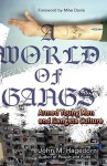 A World of Gangs: Armed Young Men and Gangsta Culture - John M. Hagedorn