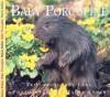 Baby Porcupine - Aubrey Lang, Wayne Lynch