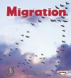 Migration - Robin Nelson