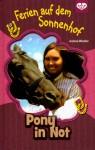 Pony in Not - Andrea Wandel