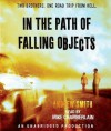 In the Path of Falling Objects - Andrew Smith, Mike Chamberlain
