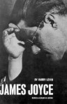 James Joyce: A Critical Introduction (New Directions Paperbook) - Harry Levin