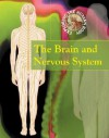 The Brain and Nervous System - Carol Ballard