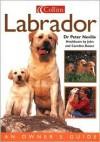 Labrador (Collins Dog Owner's Guides) - Peter Neville