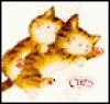 Pic Book of Cats - Linnea Dayton, Karen Weller-Watson, Yoko Imoto