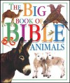 DK Pack: Big Book of Bible Animals/Bible Food Fun/God Made Me - Tyndale Kids