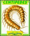 Centipedes - Graham Coleman, Tony Gibbons