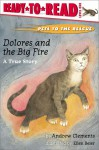 Dolores and the Big Fire: Dolores and the Big Fire - Andrew Clements, Ellen Beier