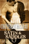 Satin and Saddles - Cheyenne McCray