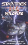 Wildfire - David Mack, Keith R.A. DeCandido, Christina F. York, J. Steven York