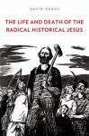 The Life and Death of the Radical Historical Jesus - David Burns