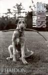 Dog Dogs - Elliott Erwitt