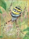 Spider. by Steve Parker - Steve Parker