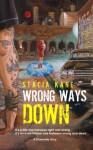 Wrong Ways Down - Stacia Kane