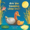 Are You Sleeping Little One - Hans-Christian Schmidt, Cynthia Vance, Andrea Nemet, Laura Lindgren