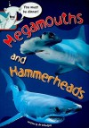 Megamouths and Hammerheads, Grade 1 - Jo Windsor