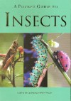 A Pocket Guide to Insects - Patrick Hook