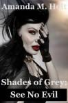 Shades of Grey III: See No Evil (Book Three in the Shades of Grey Series) - Amanda M. Holt