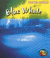 Blue Whale - Louise Spilsbury, Richard Spilsbury