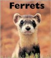 Ferrets - Mary Berendes