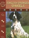 English Springer Spaniels - Lynn M. Stone