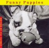 Funny Puppies (Welcome Books (Steward Tabori & Chang)) - Jean-Claude Suarès