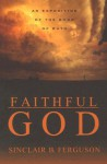 Faithful God: An Exposition of the Book of Ruth - Sinclair B. Ferguson