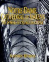 Notre Dame, Cathedral Of Amiens: The Power Of Change In Gothic - Stephen Murray