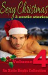 Sexy Christmas Stories - Volume Four - an Xcite Books Collection - Mimi Elise, Sadie Wolf, Elizabeth Coldwell