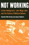 Not Working: Latina Immigrants, Low-Wage Jobs, and the Failure of Welfare Reform - Alejandra Marchevsky, Jeanne Theoharis