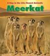 Meerkat - Anita Ganeri