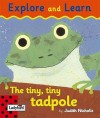 The Tiny, Tiny Tadpole (Touch & Learn Board Books) - Judith Nicholls