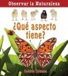 Que Aspecto Tiene? = How Does It Look? - Bobbie Kalman