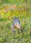 Birds of Lesvos - Richard Brooks