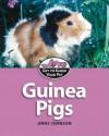 Guinea Pigs - Jinny Johnson