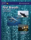 First Breath Harbor Seals and Gray Whales: Lessonplans Grades 6-8 - Lunchbox Lessons