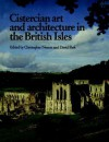 Cistercian Art and Architecture in the British Isles - Christopher Norton, David Park