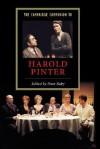 The Cambridge Companion to Harold Pinter (Cambridge Companions to Literature) - Peter Raby