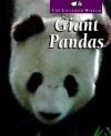 Giant Pandas - Karen Dudley