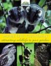 Habitat Garden - Peter Grant