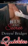 Hide and Secret - Denyse Bridger